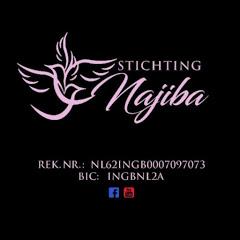Stichting Najiba