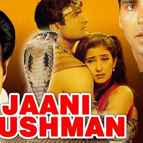Jaani Dushman: Ek Anokhi Kahani - Topic