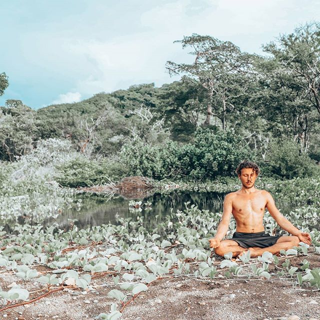 """⛔Common Meditation mistakes: Expectation & Gain. .  Don't expect to gain anything from meditation. There is only nothing to gain. . Initially we can use the benefits  that science has recently found out as motivation to begin with the process. . However, we can't DO meditation, we can just become meditativ; it is a state of being, not a state of doing. There is no gain in being. . Let everything be as it is; still. . Experience reality as it is present right now. . You don't need to work to be here and now. .  You don't need to do anything to simply be life. . When Gautama the Buddha was asked: . """"What have you gained from Meditation?"""" . He replied: """"Nothing."""" . """"However"""", Buddha said, """"let me tell you what I lost: . Anger, Anxiety, Depression, Insecurity, Fear of Old, Age and Death."""" . Keep in mind: the most important in your life, is that you are alive right now. That is all that matters. . Namaste🙏 . . . Thank you for this shot in time @morningmarjolaine - . . . . . . . . . . . . . . . . . . . #suityogi #optimism  #meditationlife #mindfulnessmeditation #naturemeditation #learnmeditation#powerfulquotes#meditationcoach #meditationeveryday  #meditationspot #healingyourself #rewireyourbrain #joedispenza #zenlife #relaxyourmind #stressreduction  #yogastrength#quoteoftheday✏️#sadhguru #menatyoga  #movementmedicine  #movementmeditation #quotestoinspire #peacefulness #peacefullife #quoteslover #quoteoflife#quotetoliveby#mindsetquotes#buddhaquotes"""