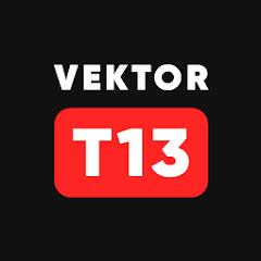 Vektor T13