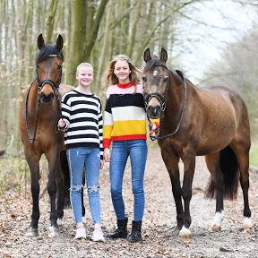 No&Flo met de paarden
