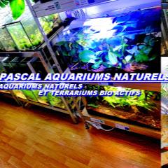 Pascal Aquariums Naturels