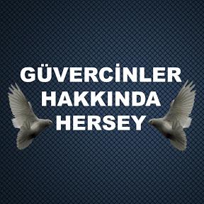 GÜVERCİNLER HAKKINDA HERŞEY