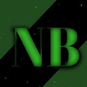 NB MOTIONS