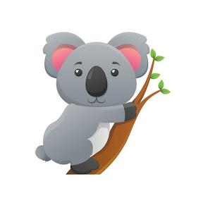 Cutie Koala