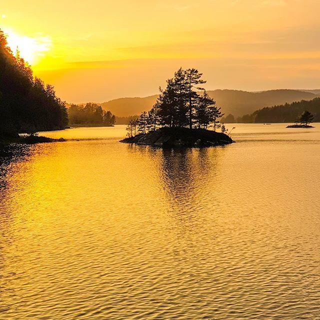 #vegårshei #norge #norway #norway2inspire #tvedestrandsposten #sorlandetno #nrksørlandet #agderposten #nrknatur #visitnorway #norway2day #norgeimitthjerte #godmorgennorge #lory_norway #norges_fotografer #mittnorge #raw_norway #dreamynorway #norskefototalenter #tree_magic #nature_worldwide_trees #got__greatshots #igbest_shots #world_photo_shots #tv_aqua #bns_earth #natura_love_ #ig_nature_naturally #bestcaptureglobal #everything_imaginable