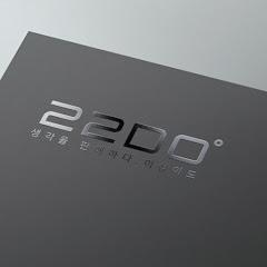 DO 22