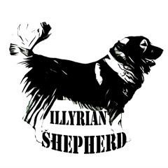 Illyrian Shepherd