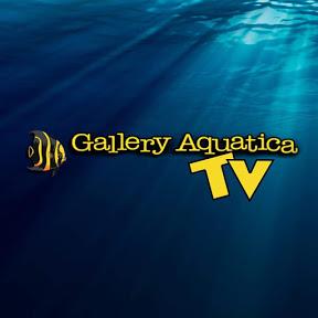 Gallery Aquatica TV