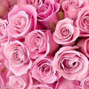 Rosy Music玫瑰音樂