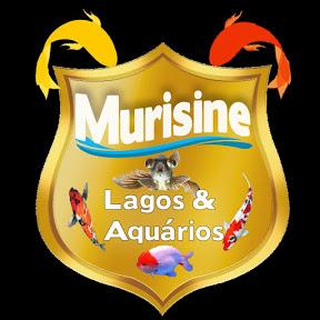 murisine lagos e aquários