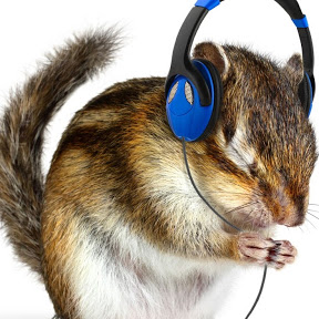 Hampster Music Channel