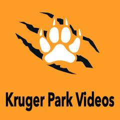 Kruger National Park Videos