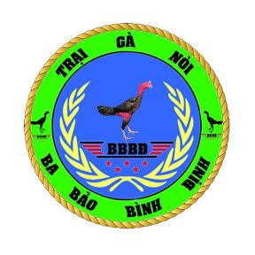 Ba Bảo Bình Định
