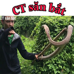 CT săn bắt