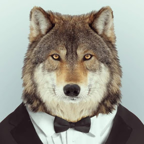 Lobo de terno