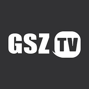 GameStopZing TV