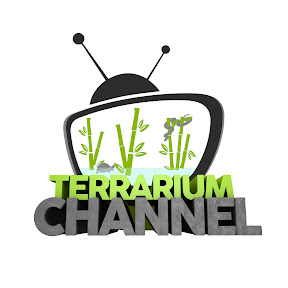 Terrarium Channel