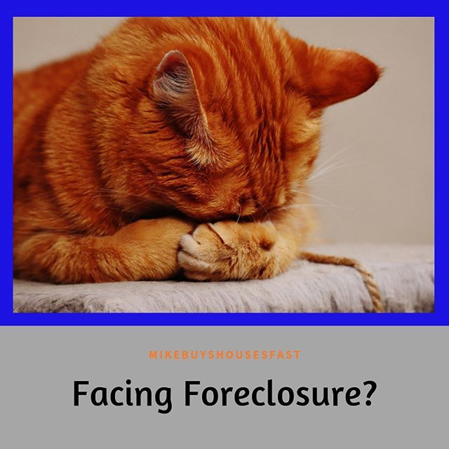 Facing Foreclosure?  Contact us! 480-401-1102  #cedaroakinc #realtor #realestate #realestateagent #wholesalerealestate #realestateinvestor #investment #wholesalinghouses #houseremodel #sellyourhome #webuyhouses