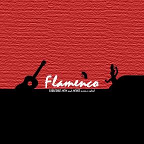 Flamenco & Rumba!
