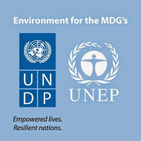 The Poverty-Environment Initiative