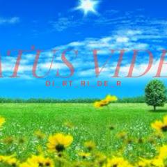 STATUS VIDEOS