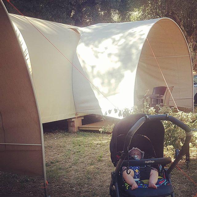 Coi bimbi piccoli dovrete rinunciare al campeggio. #cerquestra #campingcerqeustra #tendacoco #camping #lagotrasimeno #carlottina #viaggiareconibambini #umbria #primevacanze #igersumbria #nature