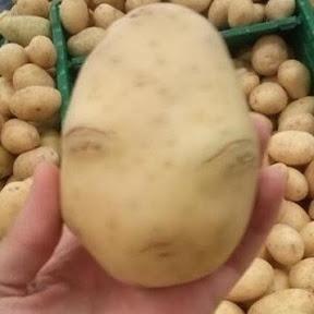 감자potato
