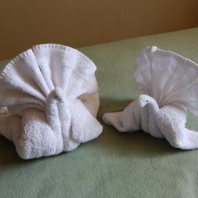 Towel folding tutorial