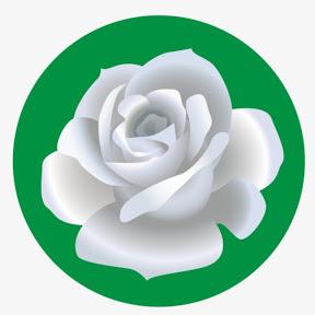 La Rosa TV