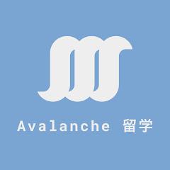 Avalanche留学チャンネル