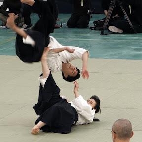 Daitō-Ryū Aiki-Jūjutsu - Topic