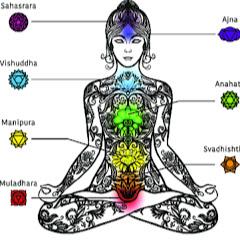 jeevan chakra nityam-जीवन चक्र *मंत्र तंत्र यंत्र वास्तु*