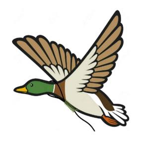 Suicide Goose
