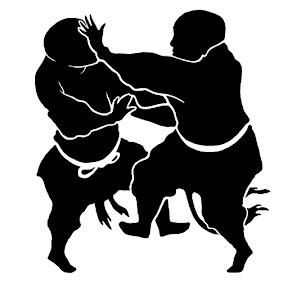 Shaolin Xinyiba