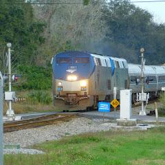 Tampa Bay Railfan