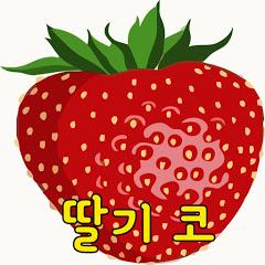 Strawberry nose딸기코