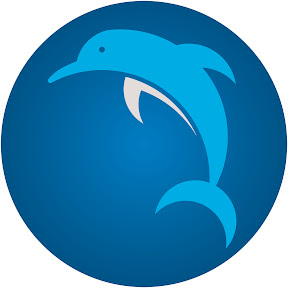 dolphin travelers
