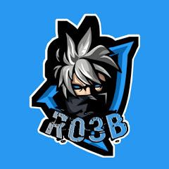 RO3B Yt