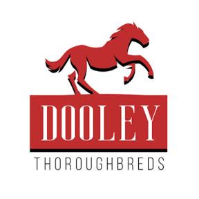 Dooley Thoroughbreds