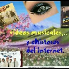 videos musicales y chistosos del internet.