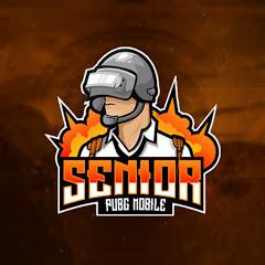 Senior I سينيور