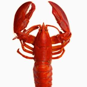 Top Lobster