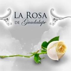 La rosa de guadalupe capitulos nuevos