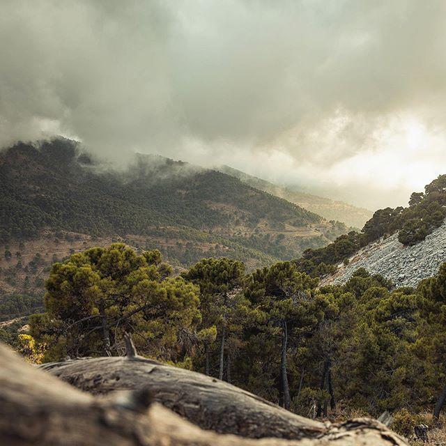 Каждая поездка в Андалусия начинается с вопроса: «Когда поедем в Ронду?». И сам город, и дорога туда прекрасны: облака пышными слоями обволакивают горы и стелятся прямо над змеящейся дорогой всего в трехстах метрах над уровнем моря, и выныриваешь из них прямо в солнечное пекло. А на закате так много красоты, что даёшь себе обещание приехать сюда ещё раз. И приезжаешь, чтобы снова дать такое же обещание. /  Every time when we travel to Andalusia we think about Ronda. The city and the road to there are breathtaking and the sunset is so beautiful that I make a promise to return here next time. And sure I will!  #andalusia #ronda #travelphotography #travelholic #travelphoto #sunset_captures #mountainview #roadstory