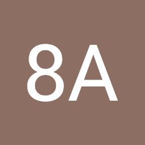 8A TEAM