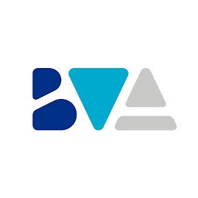 BVA Dev