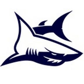 SilverSwim - Школа плавания