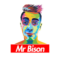 Mr Bison