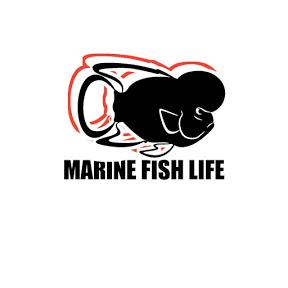 MARINE FISH LIFE